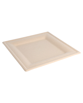 square plates 'bionic' 20x20x1 cm natural bagasse (500 unit)