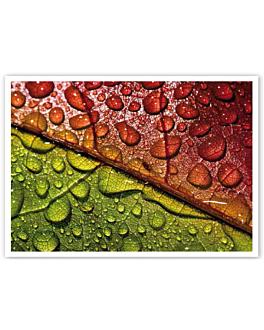 """sets de table offset """"rosÉe"""" 70 g/m2 31x43 cm quadrichromie papier (2000 unitÉ)"""