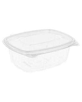 containers + lid 500 ml 14,5x11,5x5,4 cm clear rpet (500 unit)