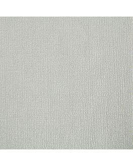 nappes pliage m 48 g/m2 100x100 cm argente cellulose (200 unitÉ)