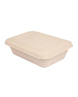 trays + lid 'bionic' 800 ml 19,3x13,5x5 cm natural bagasse (400 unit)
