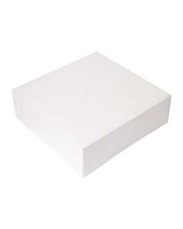 cake boxes without window 'thepack' 250 gsm 32x32x10 cm white nano-micro corrugated cardboard (100 unit)
