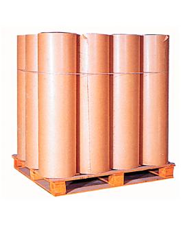 papier 63 kg 75 g/m2 110 cm marron kraft (1 unitÉ)