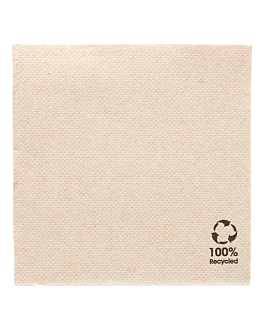 ecolabel napkins 'double point' 19 gsm 20x20 cm natural recycled tissu (2400 unit)