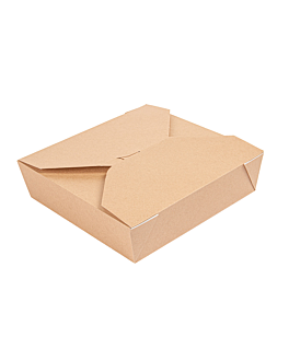 microwavable boxes rectangular 'thepack' 2910 ml 240 + 12pp gsm 21,7x21,7x6 cm natural nano-micro corrugated cardboard (100 unit)