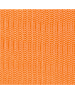 "tÊte À tÊte ""spunbond plus+"" folded 1/2 80 gsm 0,4x1,20 m orange pp (400 unit)"