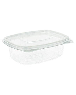 containers + lid 250 ml 13,2x9,5x4,1 cm clear rpet (600 unit)