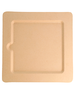 square plates 'bionic' 20x20x1 cm natural bagasse (200 unit)