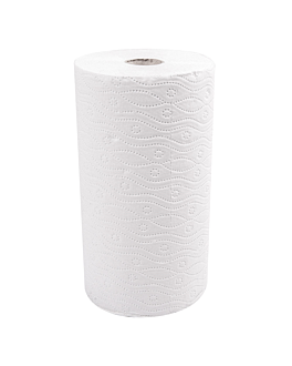 2 u. kitchen rolls 2 ply 'feel green' 24,5 gsm 24,5 cm x 30 m white recycled paper (1 unit)