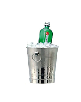 champagne bucket Ø 22x25 cm silver stainless steel (1 unit)