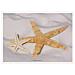 mantelines offset 'starfish' 70 g/m2 31x43 cm cuatricromÍa papel (2000 unid.)