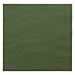 servilletas ecolabel 2 capas 18 g/m2 39x39 cm verde jaguar tissue (1600 unid.)